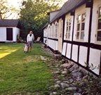Ferienhaus in Samsö für 5 Personen