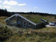 Ferienhaus in Blokhus für 14 Personen