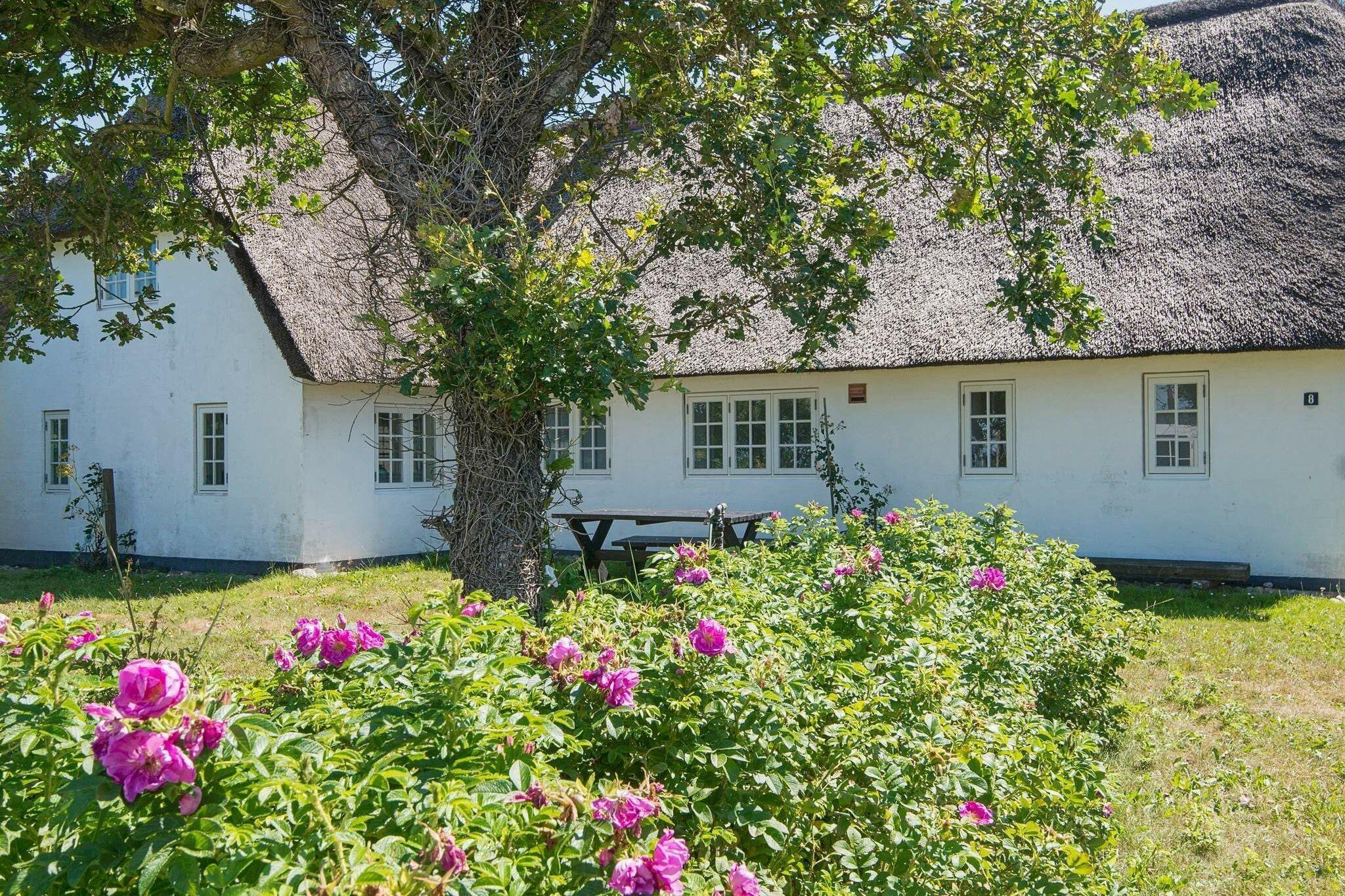 Ferienhaus in Bredebro für 7 Personen