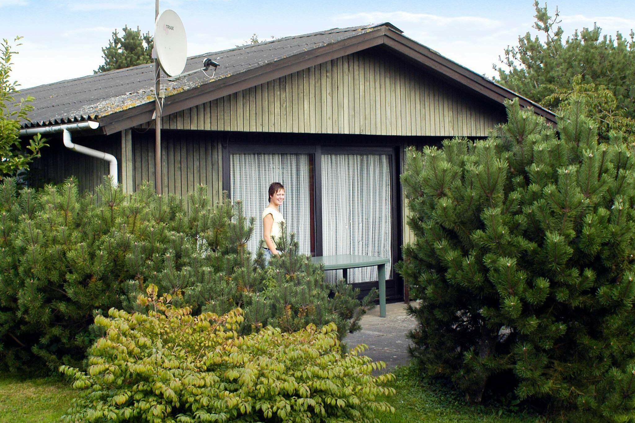Ferienhaus in Börkop für 5 Personen