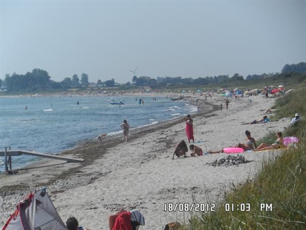 Skovmose strand