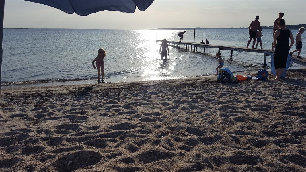 Drejet. Dyreborg strand.